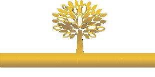 advanced reocvery systems logo